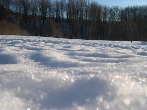 snowpocks